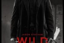 Wild-Card-2015-238x353.jpg