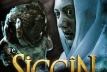 siccin-238x353.jpg
